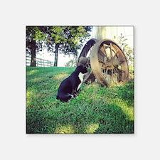 "Cat and Wagon Wheel Square Sticker 3"" x 3"""