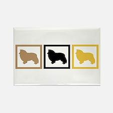 Shetland Sheepdog Rectangle Magnet