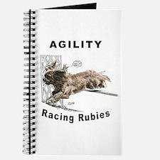 Cavalier/Ruby Agility Journal
