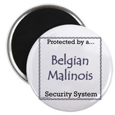 Malinois Security Magnet
