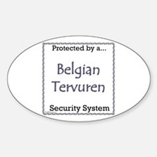 Terv Security Oval Decal