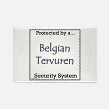 Terv Security Rectangle Magnet