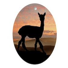 Alpaca Sunset Oval Ornament