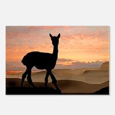 Alpaca Sunset Postcards (Package of 8)