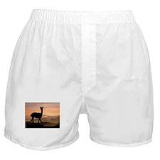Alpaca Sunset Boxer Shorts