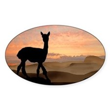 Alpaca Sunset Oval Decal