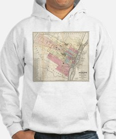 Vintage Map of Albany NY (1874) Hoodie