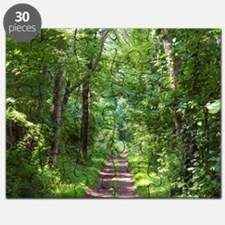 Forest Trail Puzzle