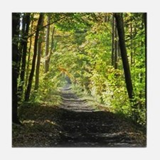 Country trail Tile Coaster