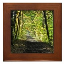 Country trail Framed Tile