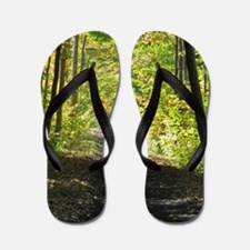 Country trail Flip Flops