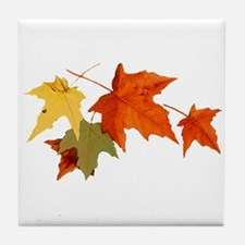 Autumn Colors Tile Coaster