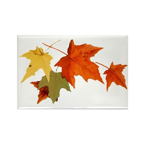 Autumn Colors Rectangle Magnet (100 pack)