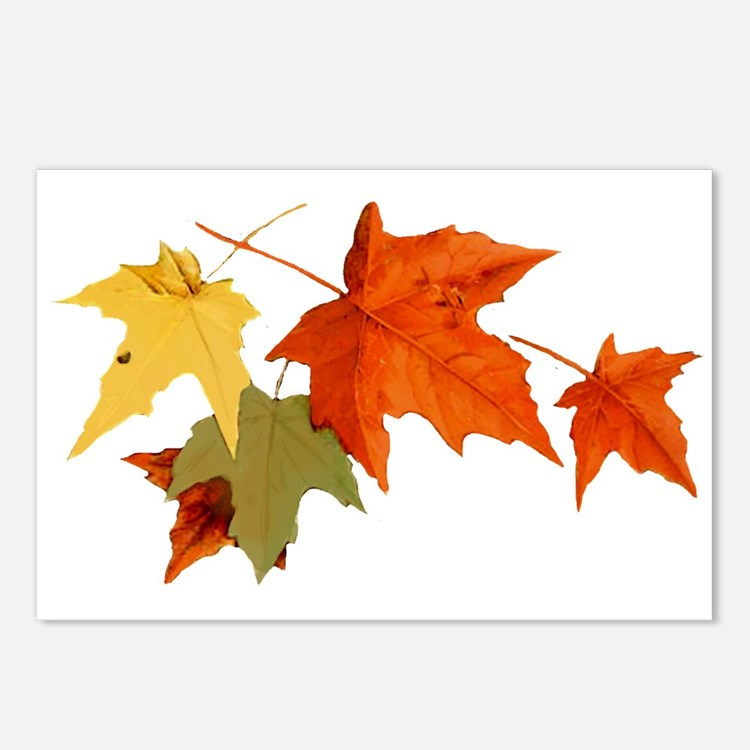 Autumn Colors Postcards (Package of 8)