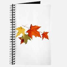 Autumn Colors Journal