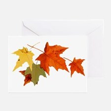 Autumn Colors Greeting Cards (Pk of 20)