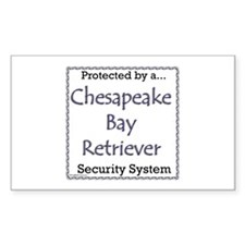 Chessie Security Rectangle Decal