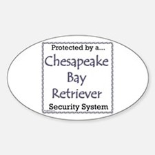 Chessie Security Oval Decal