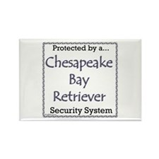 Chessie Security Rectangle Magnet