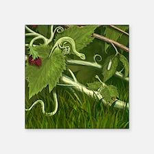 "Maple Leaf dragons Square Sticker 3"" x 3"""