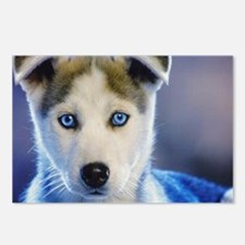 HUSKY PUPPY Postcards (Package of 8)