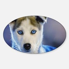 HUSKY PUPPY Decal
