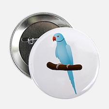 """Blue Indian Ringneck Parrot 2.25"""" Button"""