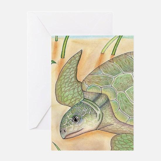 Sea Turtle Kemp's Ridley Greeting Card