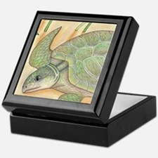 Sea Turtle Kemp's Ridley Keepsake Box