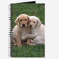 Yellow Lab Pups Journal