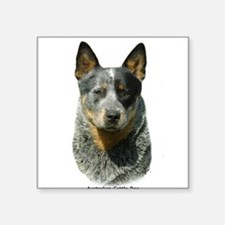 "Unique Australian cattle dog Square Sticker 3"" x 3"""