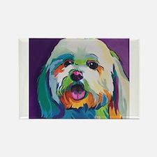 Dash the Pop Art Dog Magnets