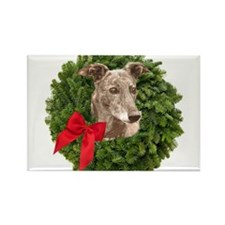 Greyhound in Christmas Wreath Magnets
