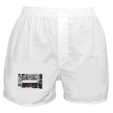 Little Red Cabin Boxer Shorts