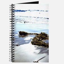 Bright Beach Journal