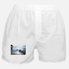 Bright Beach Boxer Shorts