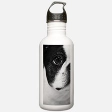 Sweet Boston Water Bottle