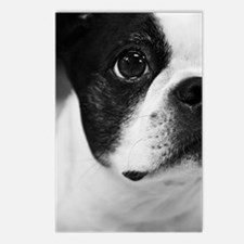 Sweet Boston Postcards (Package of 8)