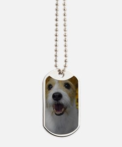 Busy Bouncing Dog Tags