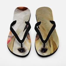 Happy Dog Day Flip Flops