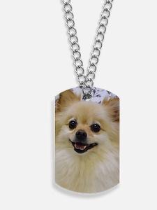 Sweet lil Lady Dog Tags