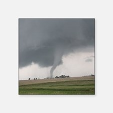 Field Tornado Sticker