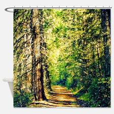 Sunlit Trail Shower Curtain