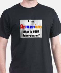 i am armenian T-Shirt