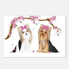 Yorkies in Blossom Postcards (Package of 8)