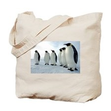 Lined up Emperor Penguins Tote Bag