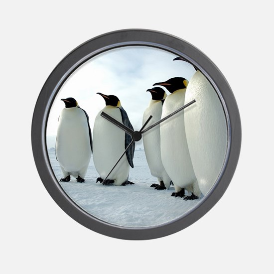 Lined up Emperor Penguins Wall Clock