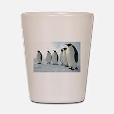 Lined up Emperor Penguins Shot Glass
