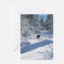 Black Lab Winter Journey Greeting Cards