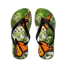 Monarch Butterfly Flip Flops